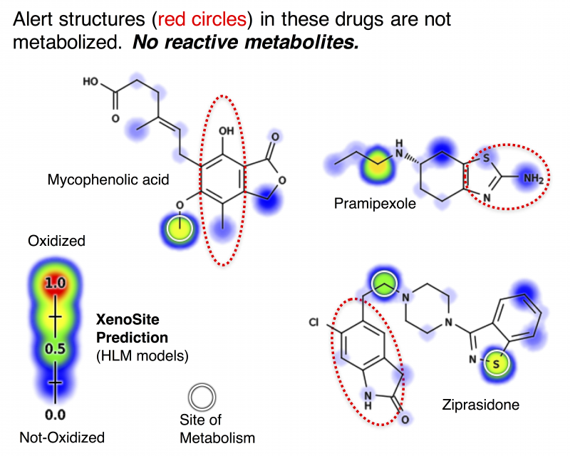 For example, models of P450 metabolism correctly recognize that all these drugs do not produce reactive metabolites, and are not toxic by the mechanism. Alert structures, in contrast, do not model metabolism and flag all these drugs as problematic.