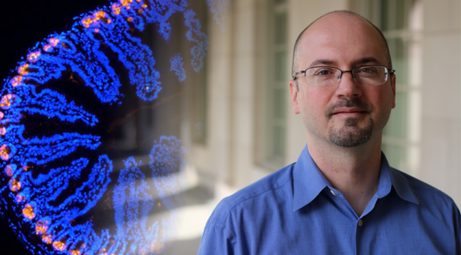Jon Marsh Joins Image Analysis Effort