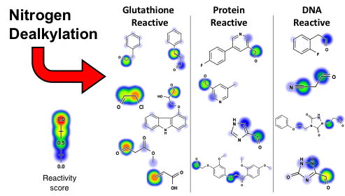 Computationally Assessing the Bioactivation of Drugs by N-Dealkylation